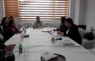 Eкономскo вклучување на младите Ромки во општина Кичево