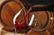 Сеподготвуваводич за вино и храна од Тиквешијата