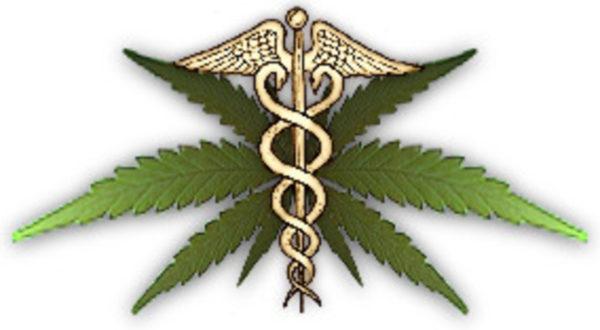 Светската здравствена организација ги призна лековитите својства на канабисот!
