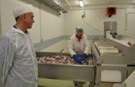 """Производи од риба на скопски """"Метро"""" почнаа да се извезуваат во Грција"""