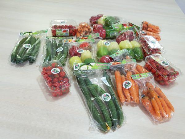 """""""Избор"""" од Струмица, социјално претријатие кое преку рехабилитациона програма за зависници произведува органски производи"""