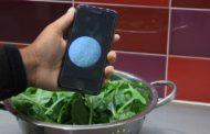 Наскоро со телефонот ќе можете да детектирате бактерии во храна