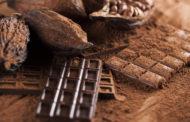 Чоколадото ќе исчезне за 40 години?!