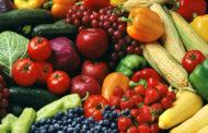 Меркел: До 2050 година треба да се произведува 70% повеќе храна во светот