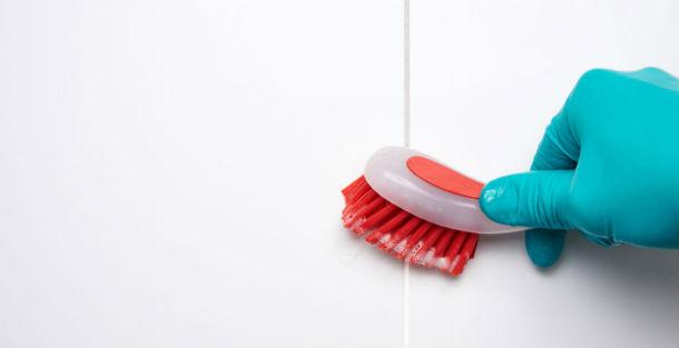 ТРИГЛАВ советува: Како да се ослободите од мувлата во станот?