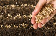 Норвешка ќе потроши 13 милиони долари за сеф со семиња во случај на катастрофа на Земјата
