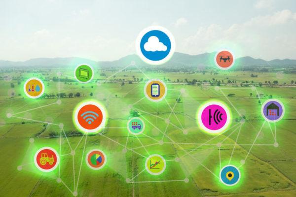 Штипскиот универзитет направи смарт апликација за земјоделство во склоп на Еразмус + проект