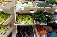 """Мисијата на """"Беорг"""" е децата да се хранат со здрава и органска храна"""
