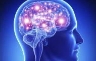 Научници направија протеза за мозокот за подобро памтење