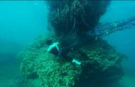 Огромна маса од рибарски мрежи плови среде Карипското Море