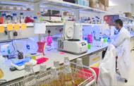 Катар тестира технологија за детектирање аутизам за само неколку минути