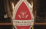 Илон Маск ќе ја оствари идејата на неговите фанови – ќе прави Teslaquilа?!
