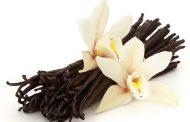 Цената на ванилата со вртоглав раст, сега е поскапа и од среброто