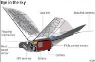 Кина направи дронови птици со кои ќе ги шпионира Кинезите