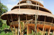Ова училиште во Бали е најеколошкото училиште во светот
