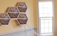 BEEcosystem ви овозможува да чувате пчели дома