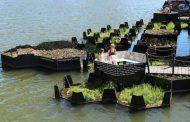 Овој парк на вода во Холандија е направен од пластичен отпад
