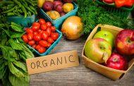 Само 0,56 отсто од обработливото земјиште отпаѓа на органско производство