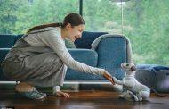 Sony го претстави своето паметно куче-робот Aibo