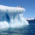 Научниците снимија необичен звук на Антартикот