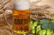 Пивото ќе поскапи како резултат на климатските промени