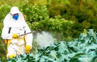 Со новиот закон за фитофармација поголема контрола на употребата на пестициди во земјоделството