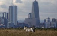 """Кенија планира до 2020 година да користи само """"зелена"""" енергија"""