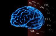 Научниците тврдат дека поради јаглерод диоксидот во воздухот стануваме се поуморни и поглупави