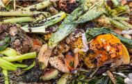 Три креативни и иновативни начини за намалување на отпадот од храна