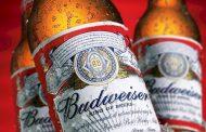 Пивото Budweiser сега се прави со 100% енергија од ветрот
