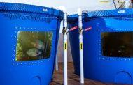 Канадска компанија за производство на канабис користи измет од риби за да ја намали потрошувачката на вода