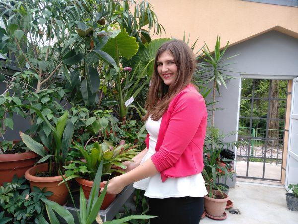 Во Скопје почнаа да се прават првите урбани градини на кров од куќа и на тераса од стан