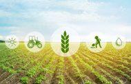 Дали македонскиот агро-сектор е подготвен да развива паметни села?