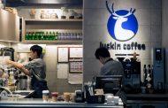 Кинескиот синџир кафетерии Luckin Coffee ќе отвора по една кафетерија на секои 3 и пол часа за да го победи Starbucks