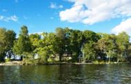 Швеѓанец нуди бесплатен престој на неговиот остров за развој на креативни идеи