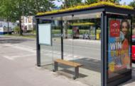 Холандскиот град Утрехт ги претвори автобуските постојки во постојки за пчели