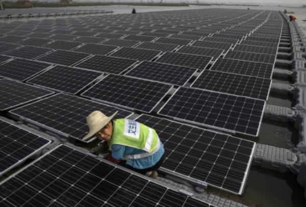 Над 80 компании заинтересирани за изградба на фотоволтаични централи