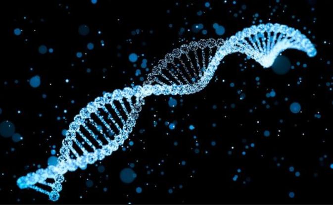 Истражување докажа дека не постои геј ген