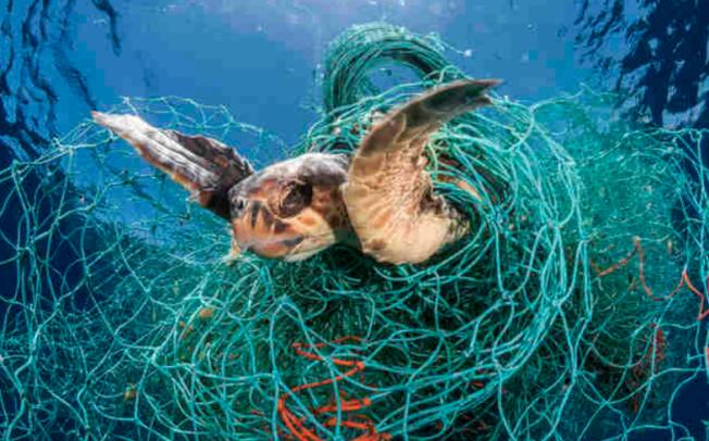 Рибари во Индија го претвораат пластичниот отпад во еколошки даски за сурфање